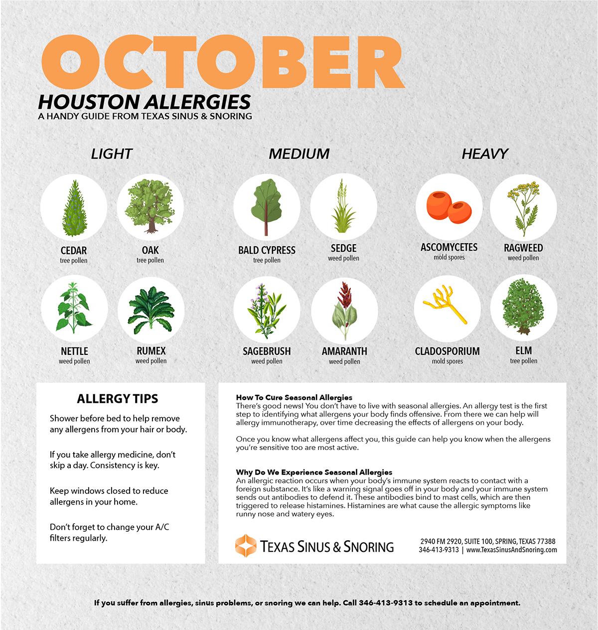 Fall allergies houston