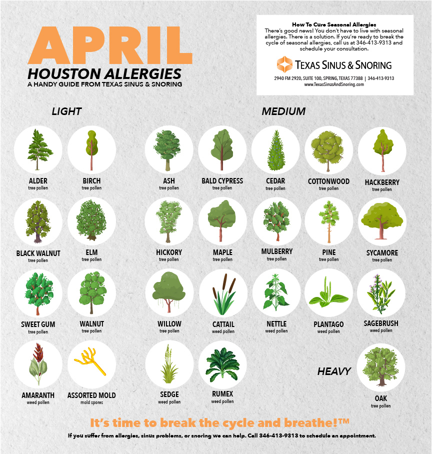 allergies houston allergies april allergies houston