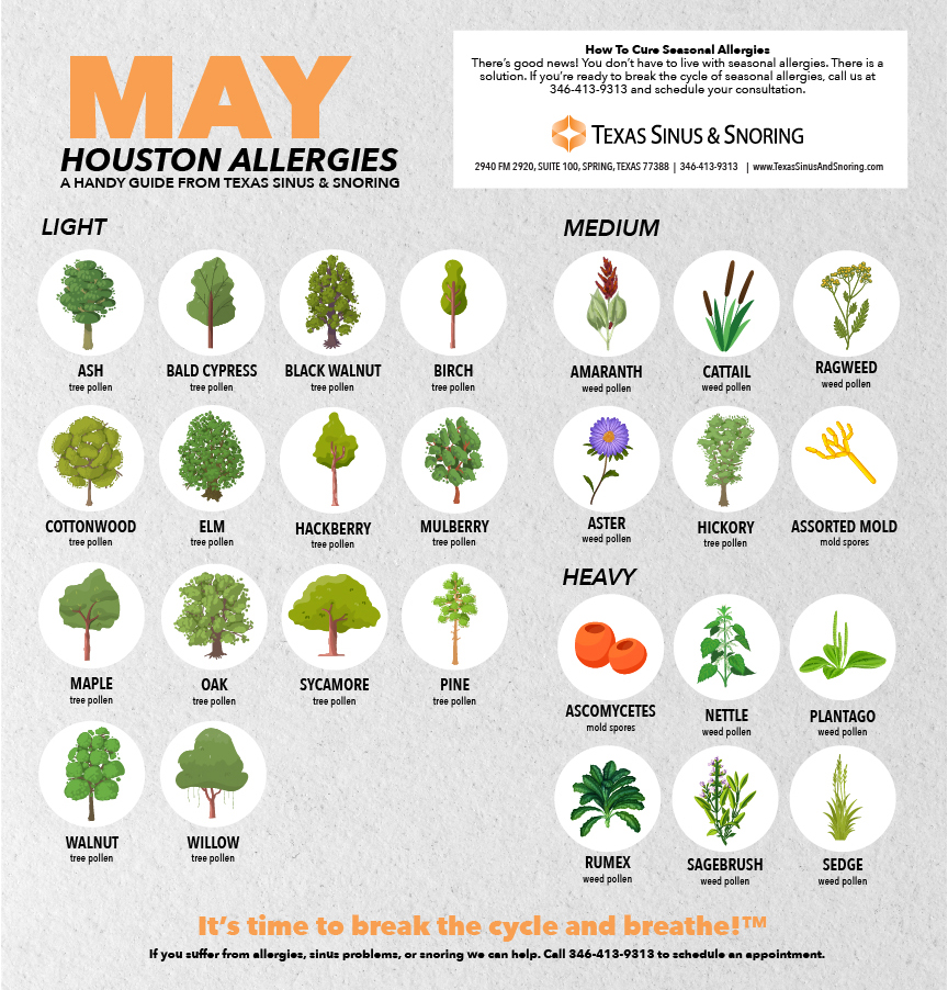 Houston allergies may